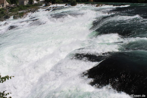 Schweiz - Immer näher zum Wasser beim Rheinfall