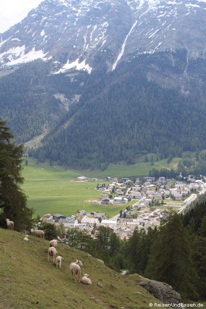 Auf derm Weg Richtung Albula - Blick auf La Punt-Charmues