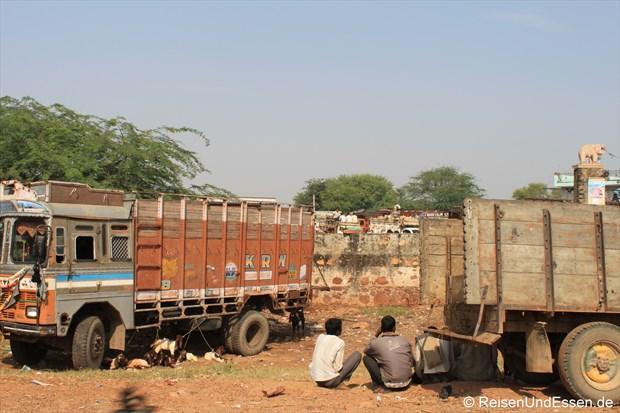 LKW bei einem Viehmarkt