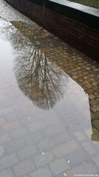 Spiegelung nach dem Regen