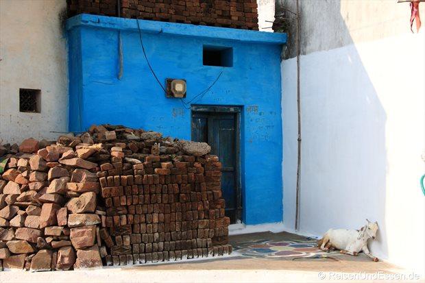 Blaues Haus und Ziege macht ein Nickerchen