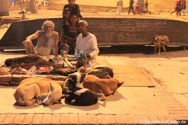 Gläubige und Hunde am frühen Morgen in Varanasi