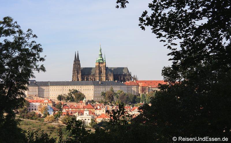 Blick auf die Burg und Veitsdom