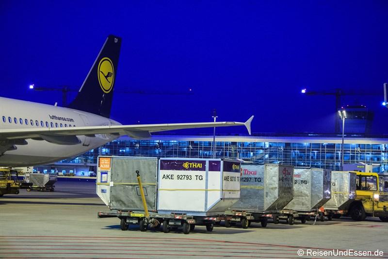 Gepäck für Flug TG 925 am Flughafen München