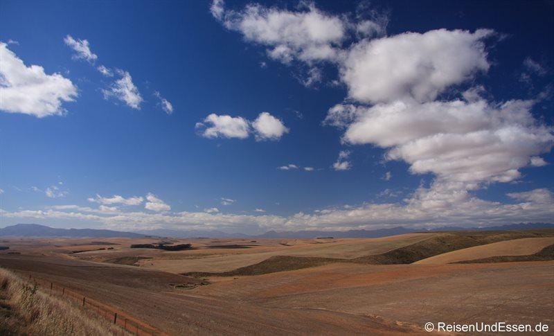 Landschaft an der R316/326 zwischen Napier und Hermanus