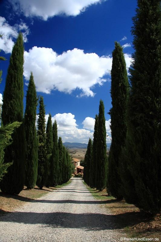 Impressionen aus der Toskana