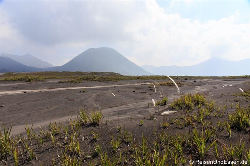 Blick Richtung Gunung Batok