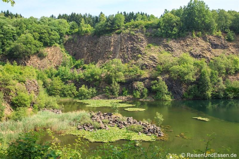 Weiher im Basaltpark Bad Marienberg
