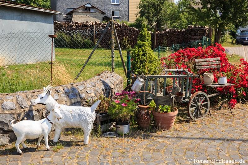 Zwei Ziegen laden zum Besuch ein