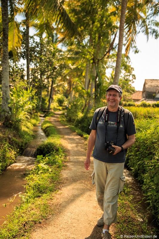 Weg durch die Reisfelder in Ubud