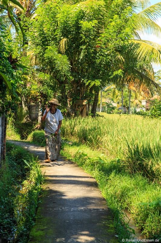 Balinesin im Reisfeld