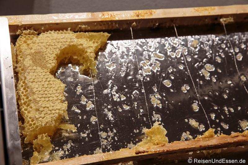 Bienenwabe beim Frühstück im Arcotel Camino Stuttgart