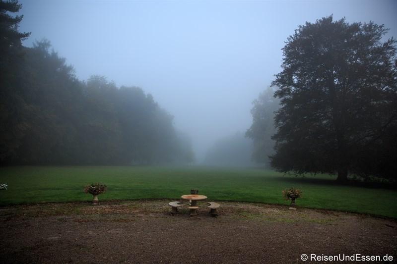 Morgendlicher Nebel im Schlosspark