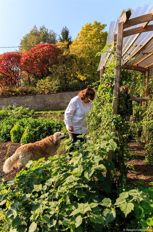 Marie-France mit Hund im Bio-Garten