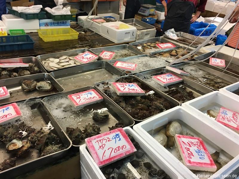 Frische Muscheln auf dem Tokio Fischmarkt