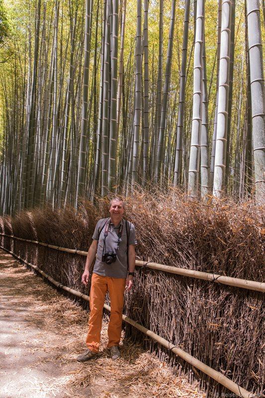 Auf dem Weg im Sagano Bambuswald
