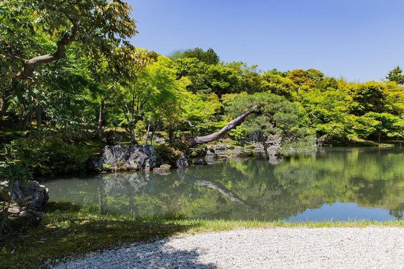 Teich im Tempel Tenryu-ji in Kyoto