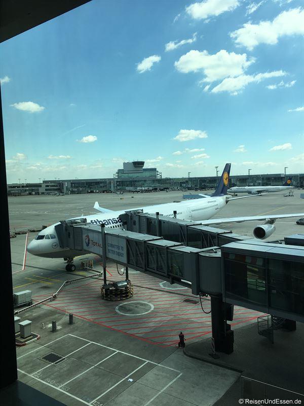 Lufthansa Airbus A340-300 am Gate in Frankfurt