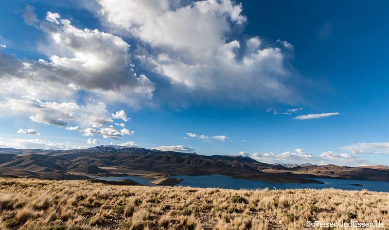 Blick auf die Laguna Lagunillas