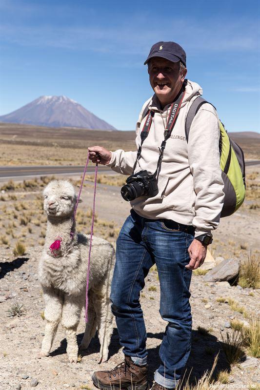 Mit einem Babyalpaka beim Stopp in Patahuasi