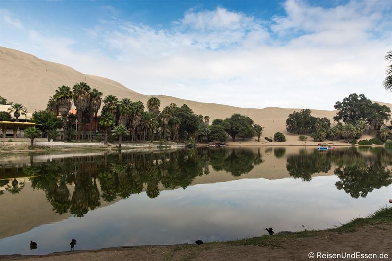 Relaxen in der Oase Huacachina