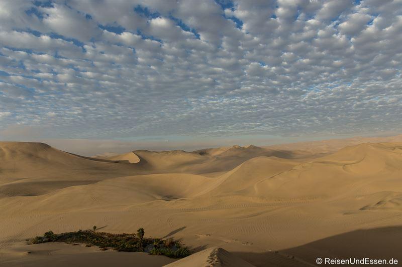 Blick am frühen Morgen auf die Sanddünen in Huacachina