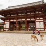 Nara – Hirsche und Tempel als Sehenswürdigkeiten