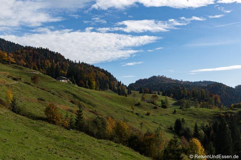 Aufstieg vom Wanderparkplatz Schafflerhof / Mühlbergalm Richtung Taubensee