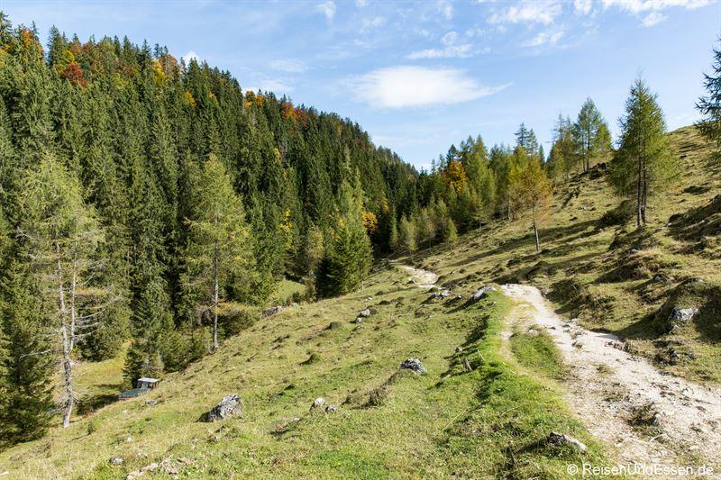 Weg zur Taubenseehütte im Kaiserwinkl