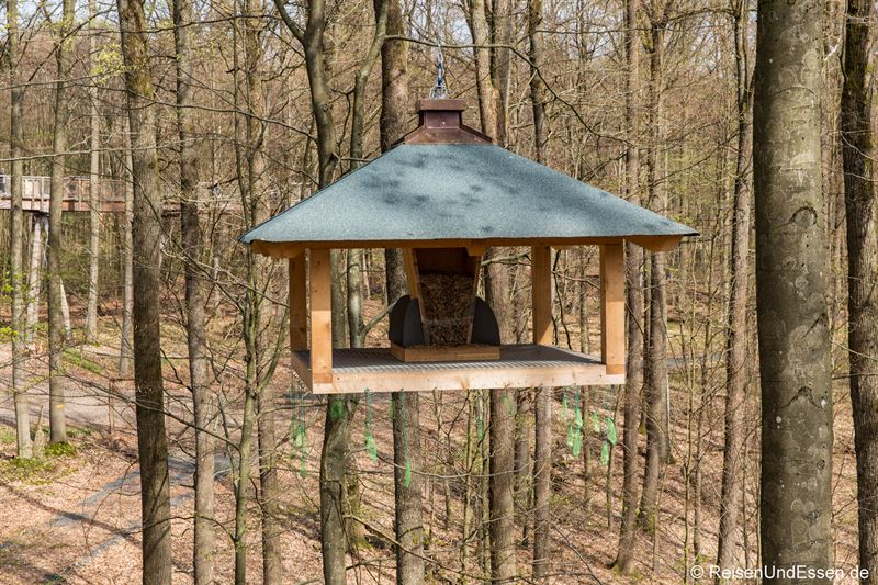 Vogelhäuschen in luftiger Höhe
