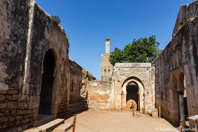 Ruinen in Chellah bei Rabat