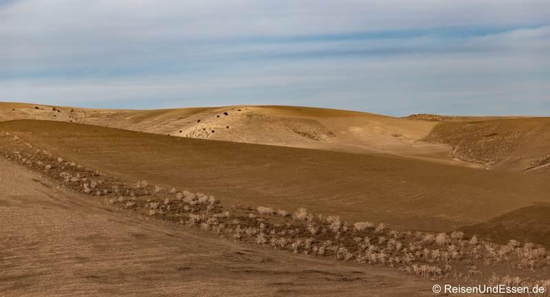 Landschaft bei Volubilis und Moulay Idriss