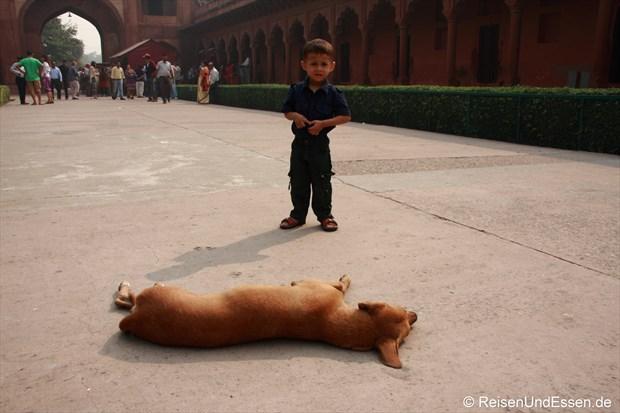 Hund und Kind im Eingangsbereich