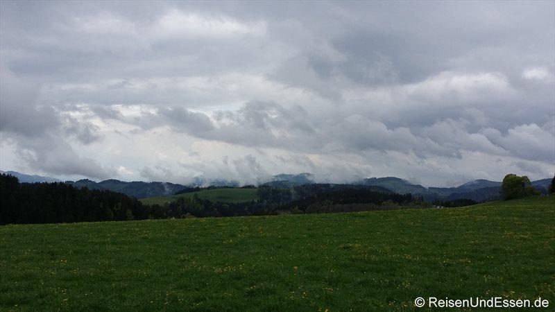 Regenstimmung mit Wolken im Hochschwarzwald