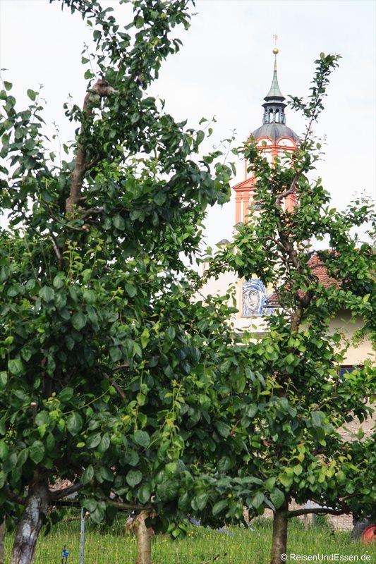 Zwetschgenbäume im Blick von Mutter Maria