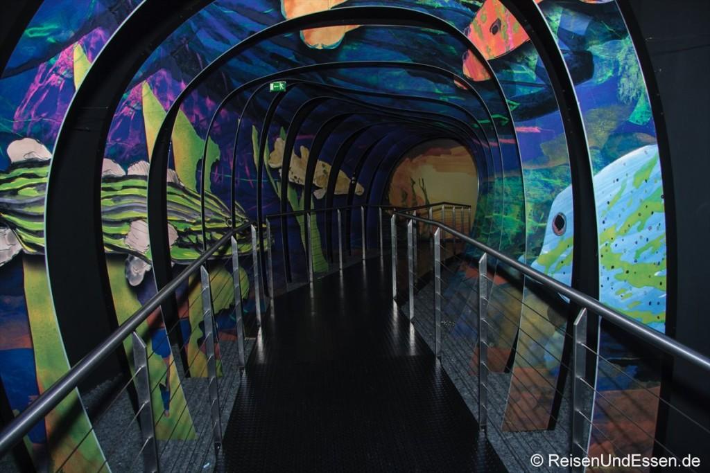 Zugang zu Reflexionen in den Swarovski Kristallwelten