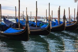 Read more about the article Ausgestorbenes Venedig: Rialto und Markusplatz menschenleer