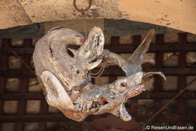 Mumifizierter Hai am Stadttor