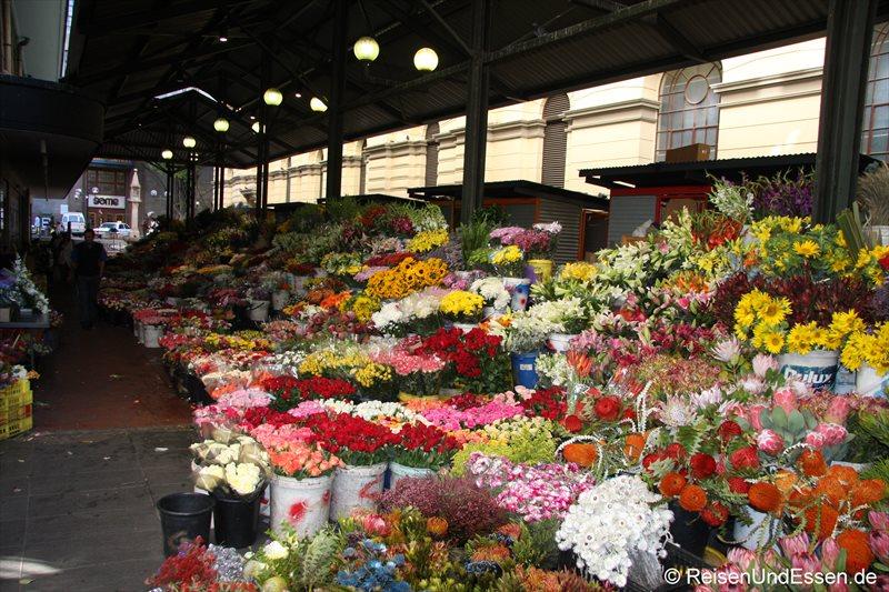 Blumenmarkt in Kapstadt