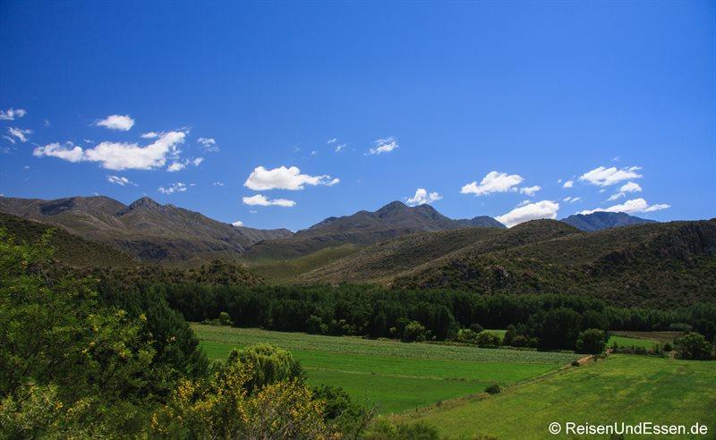 Landschaft in der Kleinen Karoo bei Oudtshoorn