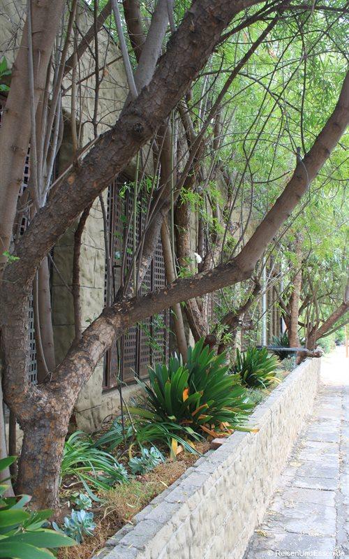 Zaun zu einem Federpalast der Straußenbarone in Oudtshoorn