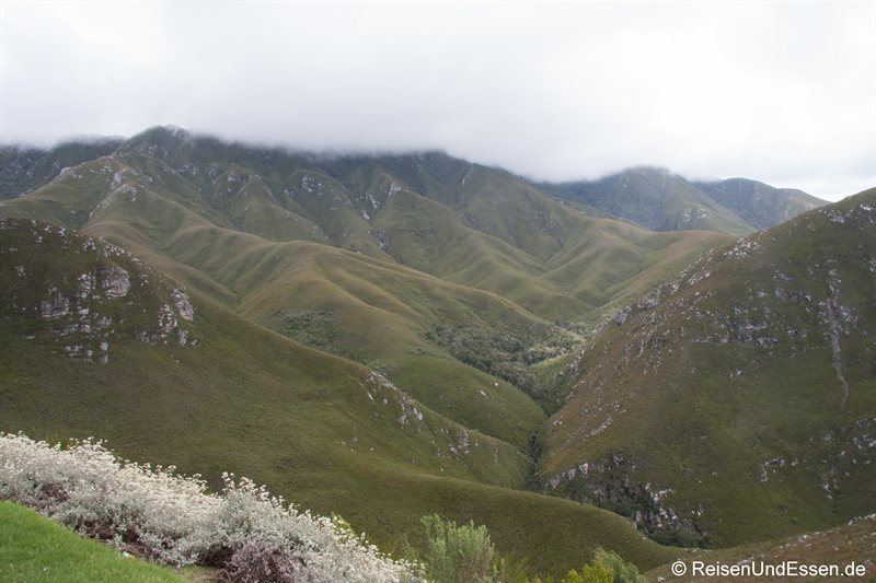 Blick vom Outiniqua-Pass