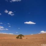 Mit dem Mietwagen zum südlichsten Punkt in Afrika