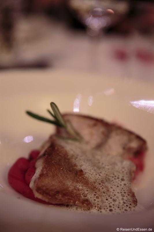 Gegrilltes Wallerfilet mit Krenschaum auf roten Rübenmousseline