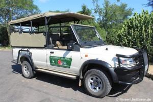 Erste Begegnungen mit Kudu, Elefant und Giraffen im Krüger Nationalpark