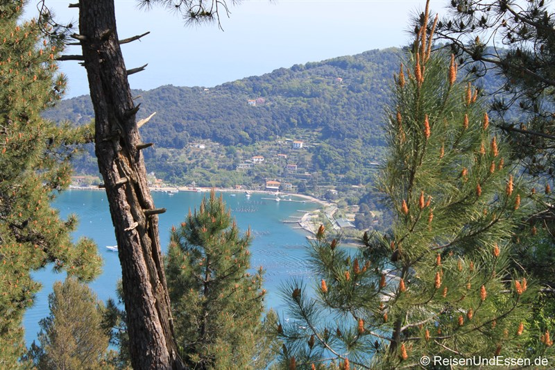 Blick auf Isola Palmaria