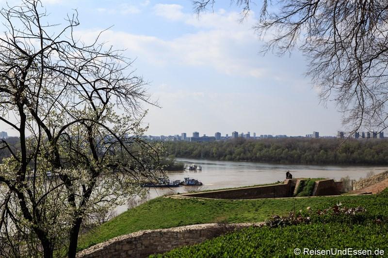 Zusammenfluss von Save und Donau an der Festung