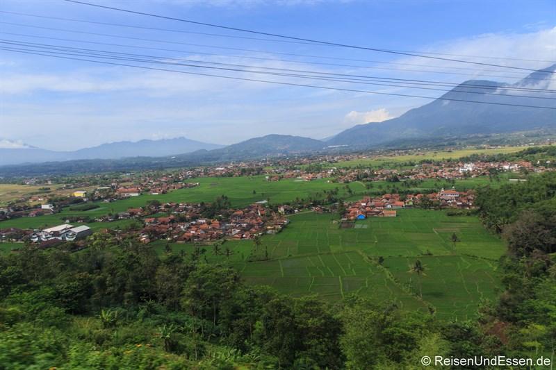 Blick auf eine Ebene mit Reisfelder und Dörfer