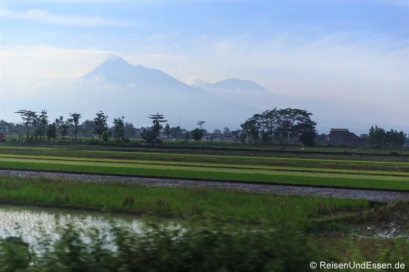 Anreise mit Argo Wilis nach Surabaya für Erlebnis Bromo