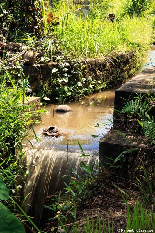 Bewässerungskanal im Reisfeld